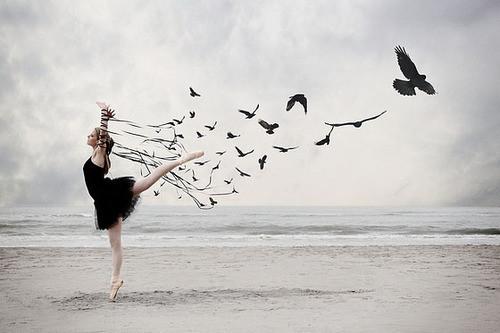 Quando a gente aprende a ser livre